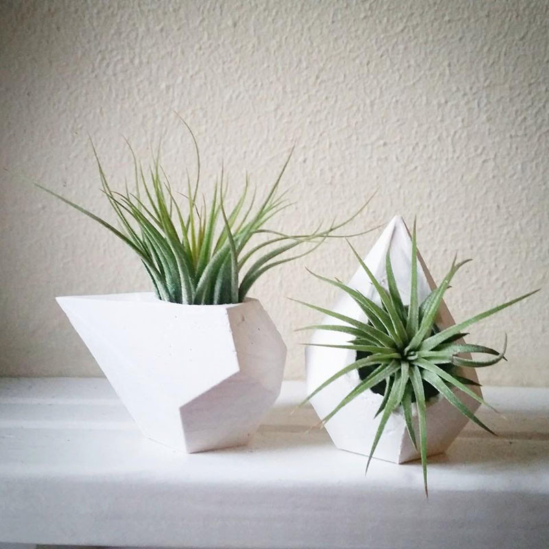 12 Elegant Ways To Bring Air Plants Into Your Home // These teardrop designs add a touch of contemporary to your mantle. #AirPlants #ModernHomeDecor #Planters #ModernDecor