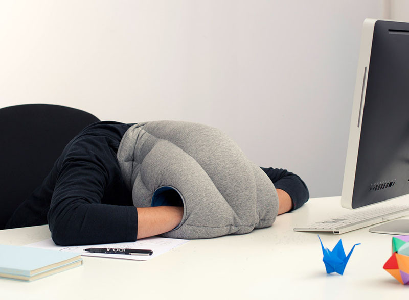 This Pillow Lets You Comfortably Take A Nap Wherever Are Like Your Desk
