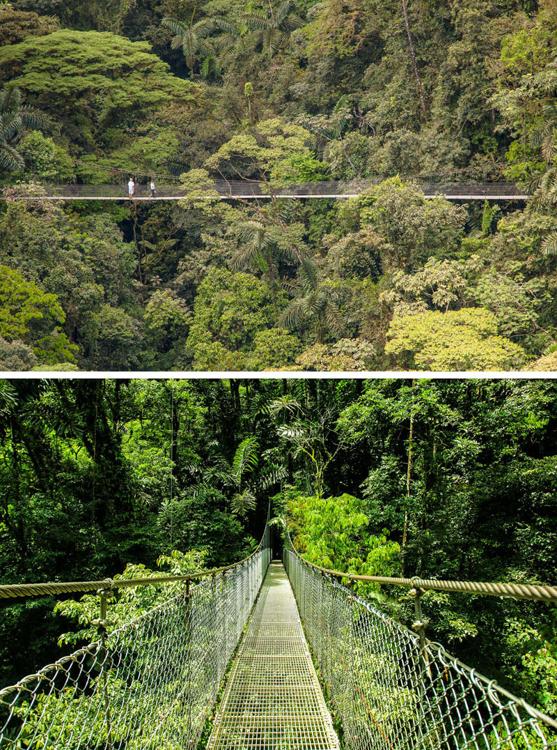 10 Of The Most AMAZING Suspension Bridges In The World // The suspension bridges at the Mistico Arenal Hanging Bridges Park in Costa Rica, offers incredible views of the surrounding rainforest and experience an ecosystem like no other.