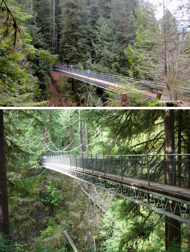 10 Of The Most AMAZING Suspension Bridges In The World // The Drift Creek suspension bridge in Oregon is part of a beautiful hike along the Oregon coast.