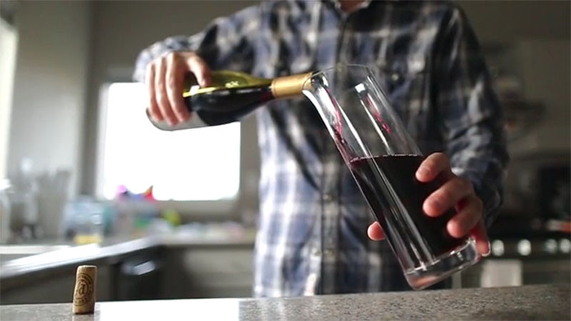 Wine Squirrel: The Decanter That Preserves Wine for Weeks