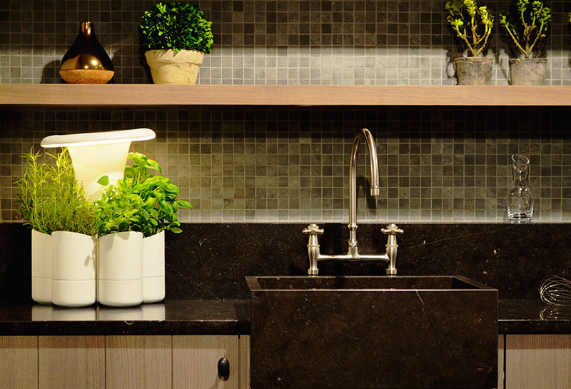 Calla, an indoor hydroponic herb planter