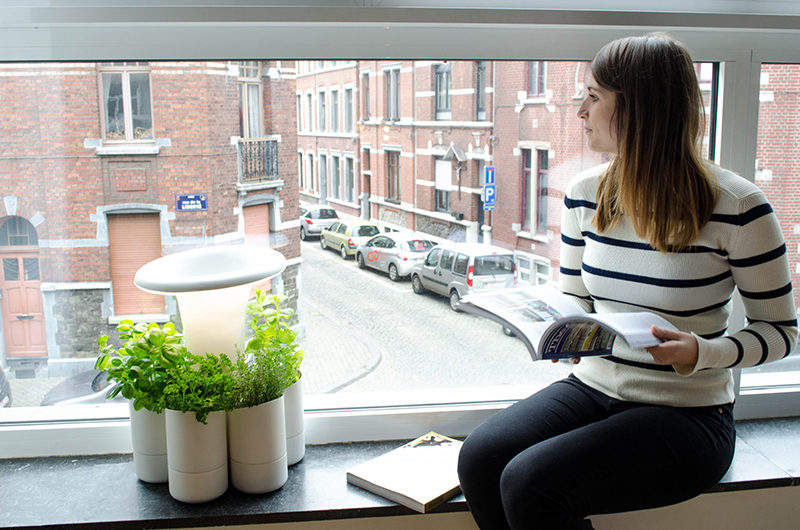 Calla Is A New System For Growing Fresh Herbs At Home CONTEMPORIST