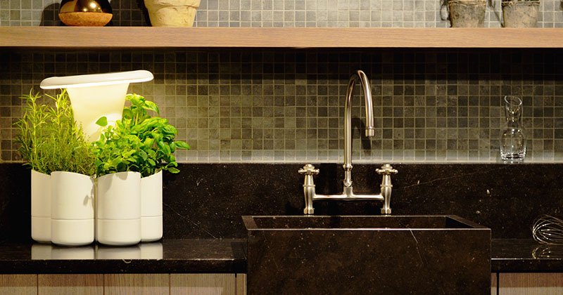 Calla Is A New System For Growing Fresh Herbs At Home