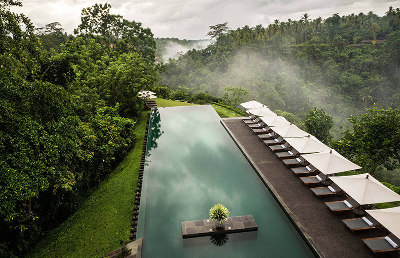 10 Incredible Hotel Rooftops From Around The World // 1. The infinity pool on the roof of the Ubud Hotel in Bali appears to float above the Ayung River valley underneath it.
