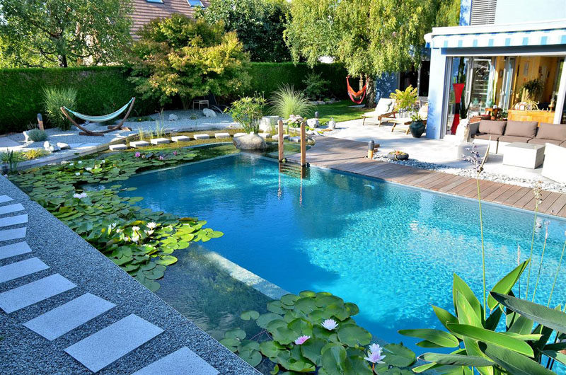 What Is A Natural Swimming Pool We Explain