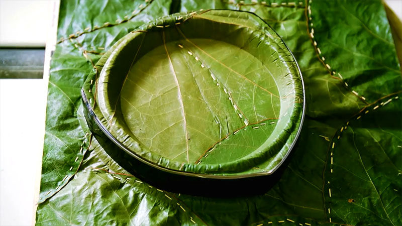 These 100% Recyclable Plates Are Made From Leaves & These New 100% Recyclable Plates Are Made From Leaves | CONTEMPORIST