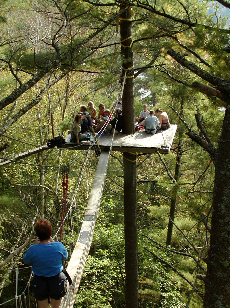 11 Tree Top Walks For Lovers Of Nature // he Haliburton Canopy Tour in the Haliburton Forest in Ontario, is part of a guided tour that teaches you about the ecology of the forest you're in.