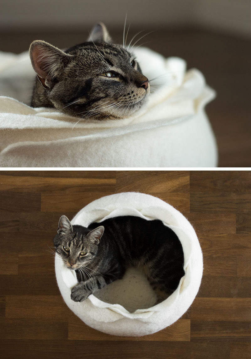 Cat Beds Don T Have To Look Like A Cat Bed Contemporist