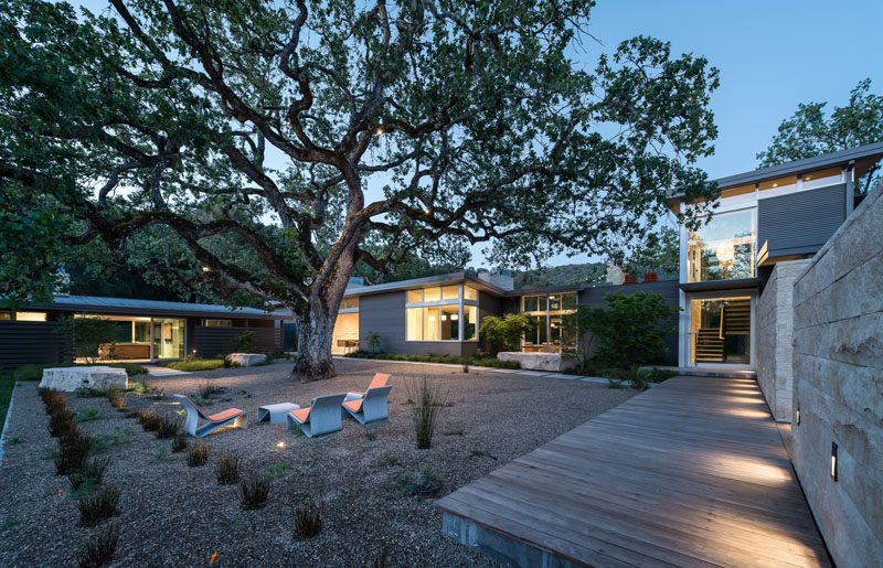 This home has been designed in a horse-shoe shape around a 100-year-old Valley Oak, that provides shade for the surrounding courtyard.
