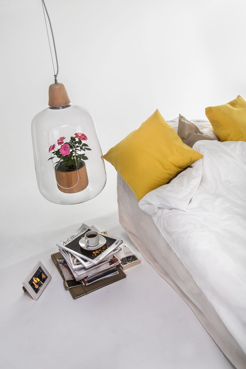 This modern lamp Each lamp can be used as either a table or pendant lamp, and has a small section cut out from the glass shade, allowing a small plant to be placed inside. #Lamp #LampWithPlan #Design #Decor #Lighting