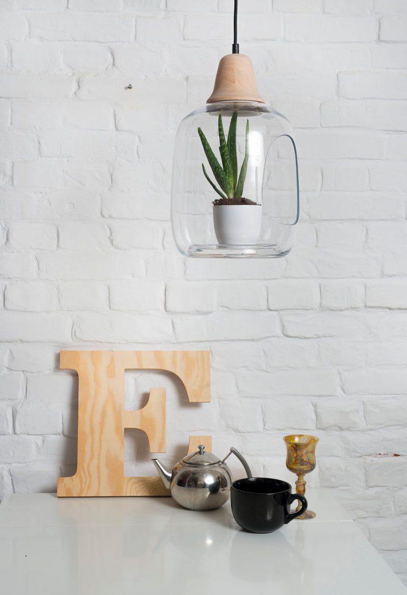 These Glass Lamps Put Your Plants On Display
