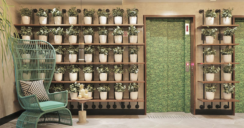 Wall Decor Idea - Create A Grid Of Identical Planters For A Contemporary Look