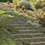 Landscape Design Idea – Steps With Integrated Greenery