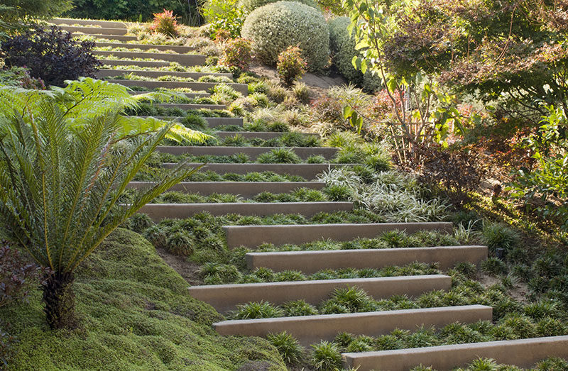 Landscape design idea steps with integrated greenery for Landscape design ri