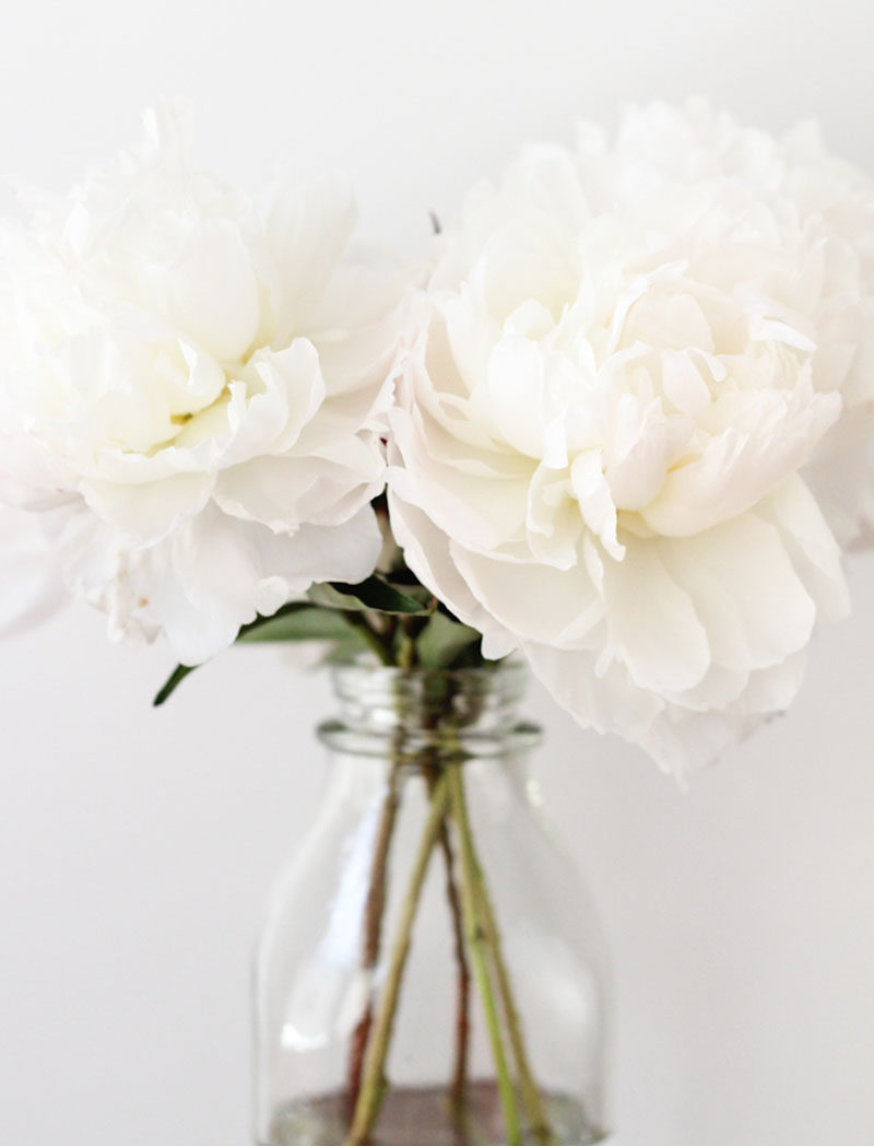 Throw An All White Party With These Ideas For Food And Decorations / Decorate with a simple bouquet of all white flowers.