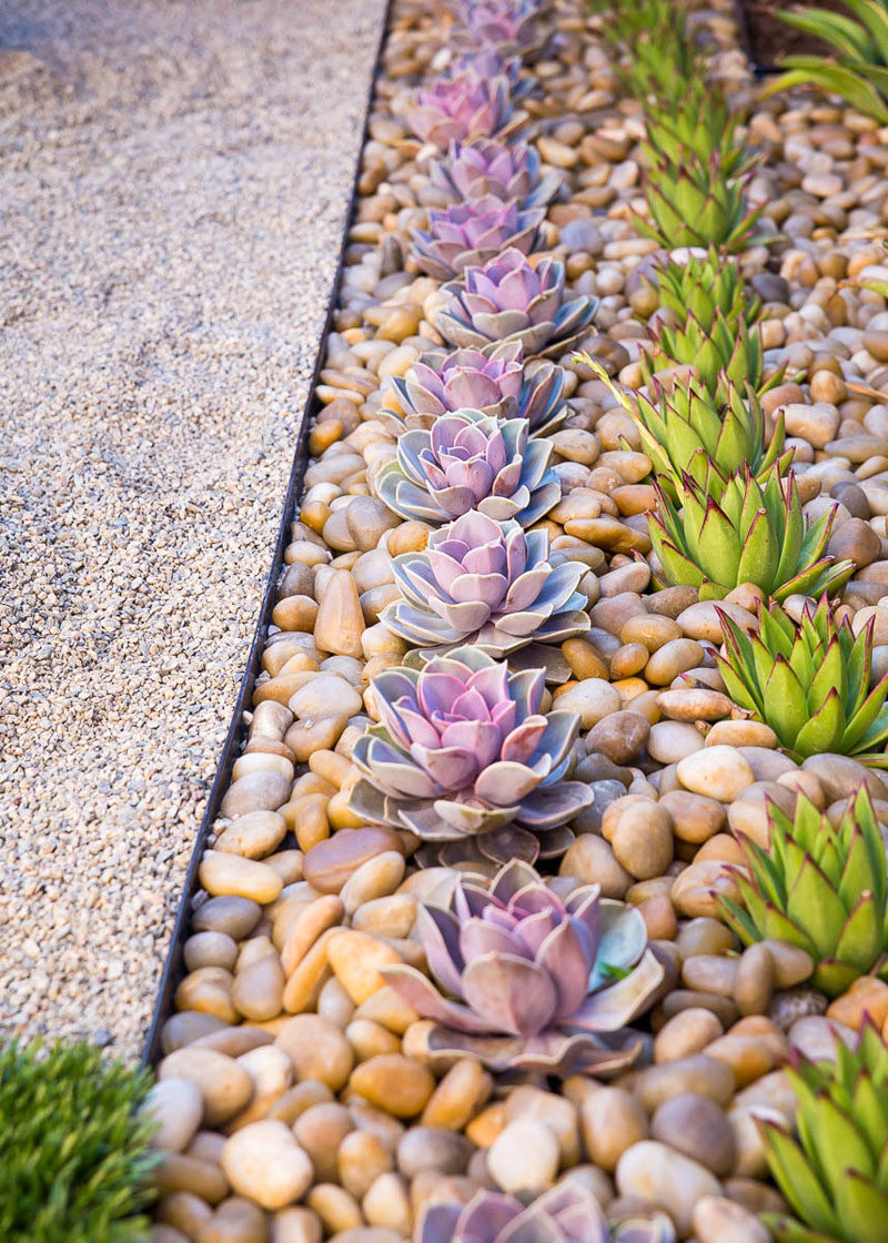 8 Elements To Include When Designing Your Zen Garden // Succulents -- Plant life connects you to nature and aids in the process of relaxation. Including low maintenance plants, like succulents, in your zen garden helps create feelings of calmness and serenity.