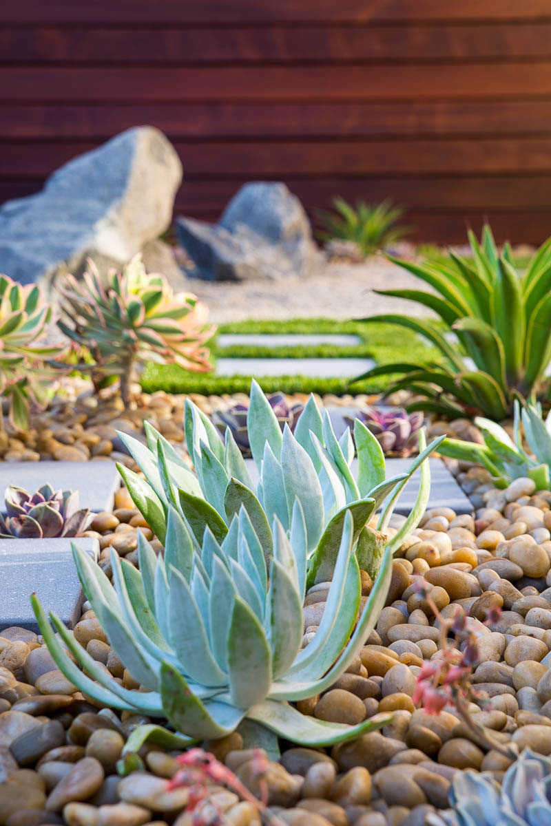 8 Elements To Include When Designing Your Zen Garden CONTEMPORIST