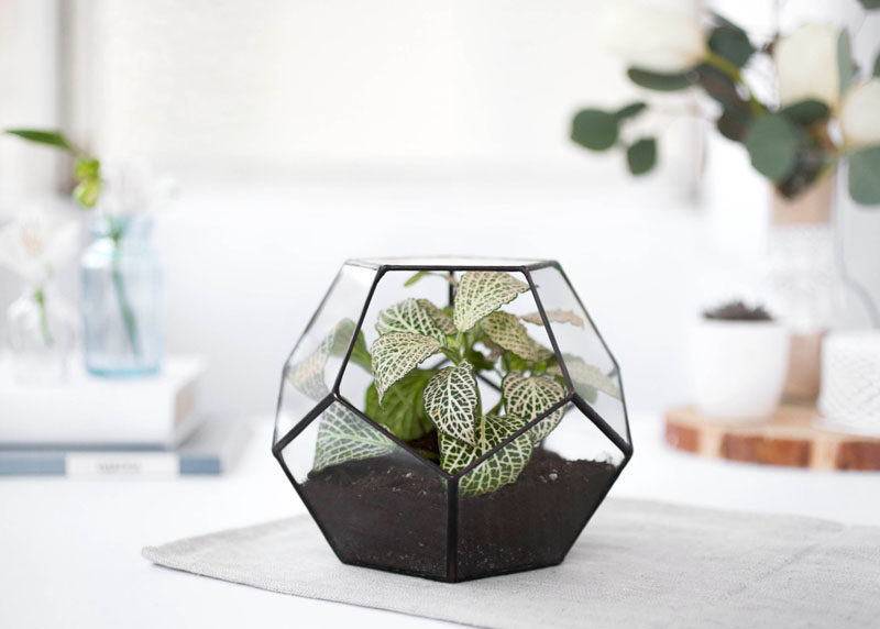 17 Ways To Introduce Botanical Designs Into Your Home Decor // Place a geometric terrarium on your coffee table and be on top of two trends - terrariums and botanicals!