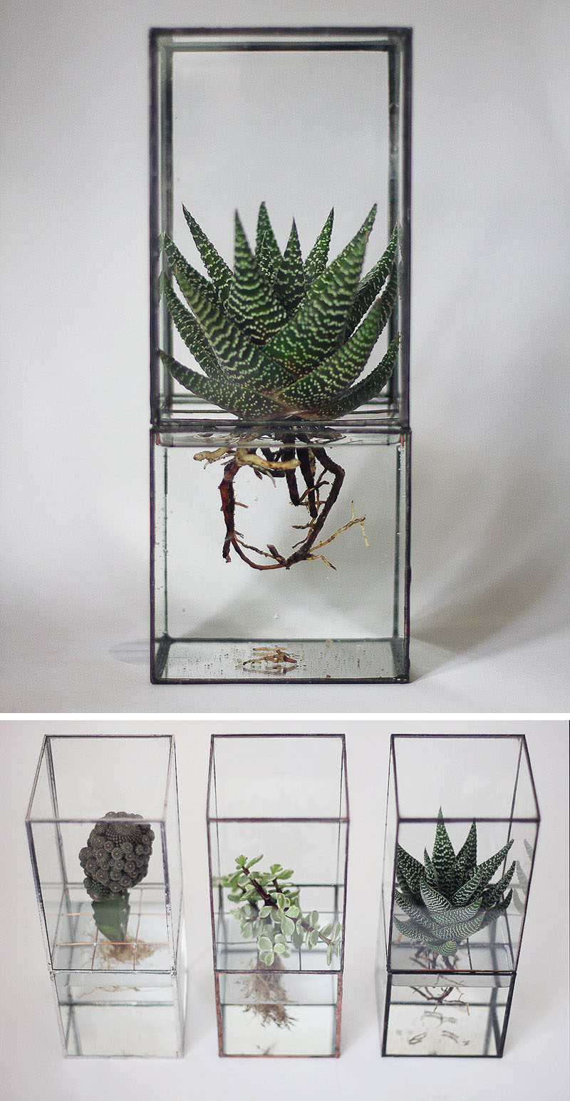 17 Ways To Introduce Botanical Designs Into Your Home Decor // Display a hydroponic terrarium so you can enjoy your plants and have a conversation starter.