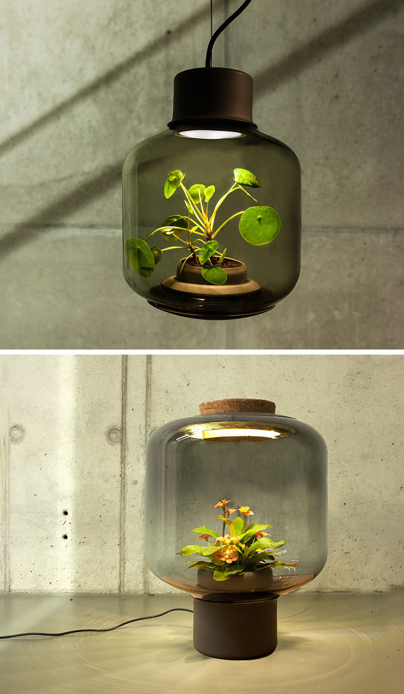 17 Ways To Introduce Botanical Designs Into Your Home Decor // These lamps allow environments that don't have any windows to still be able to participate in the live botanical trend.