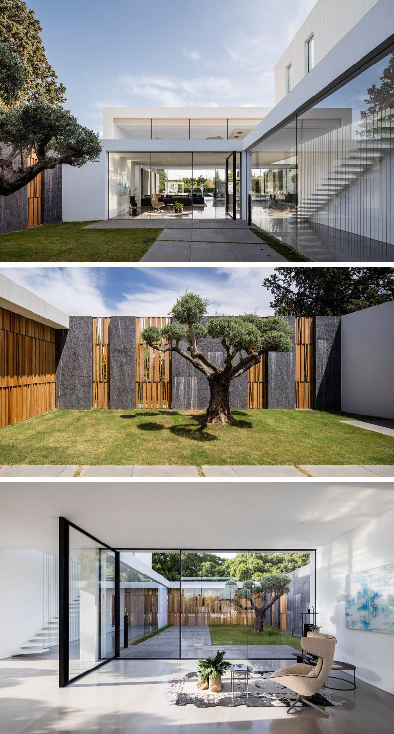 Upon entering this contemporary home, you are greeted by a grassy courtyard with a single tree, and views of the interior of the home. Through the large pivoting glass front door there's a small sitting area.