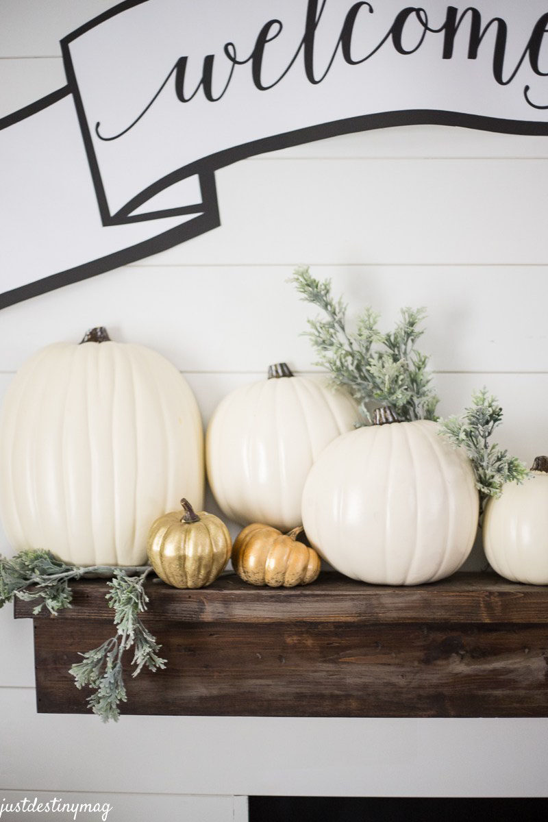 8 Ideas For Bringing Fall Decor Into Your Home // Decorate The Mantle -- To complete your own mantle, place vases of flowers, branches and leaves on display, surround family photos with pumpkins, and include a few candles to warm up the space even more.