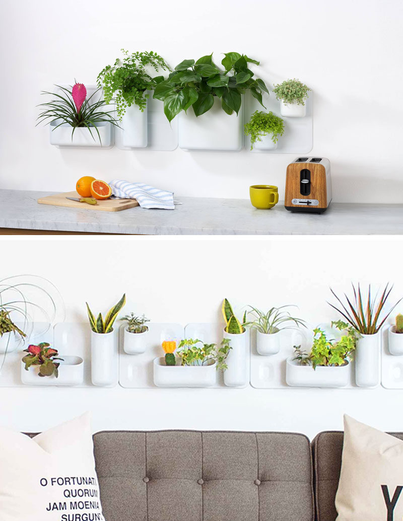 Indoor Garden Ideas - Hang Your Plants From The Ceiling & Walls // Configure your garden in anyway you like using these planters that stick to the wall using magnetic plates. They allow you to move things whenever you want, making it great for when your plants outgrow the configuration they start in.