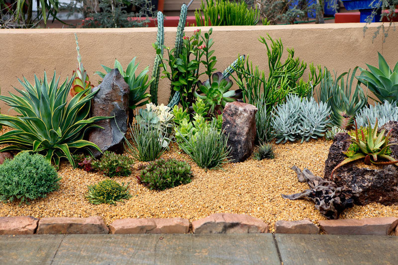 The front yard of this home has been filled with rocks and an assortment of low maintenance, drought tolerant plants.  #RockGarden #GardenIdeas #ModernGarden #Landscaping #GardenDesign
