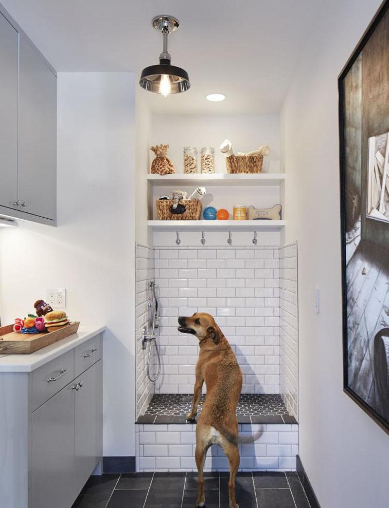 9358588 Photoshop This Dog Washing Station