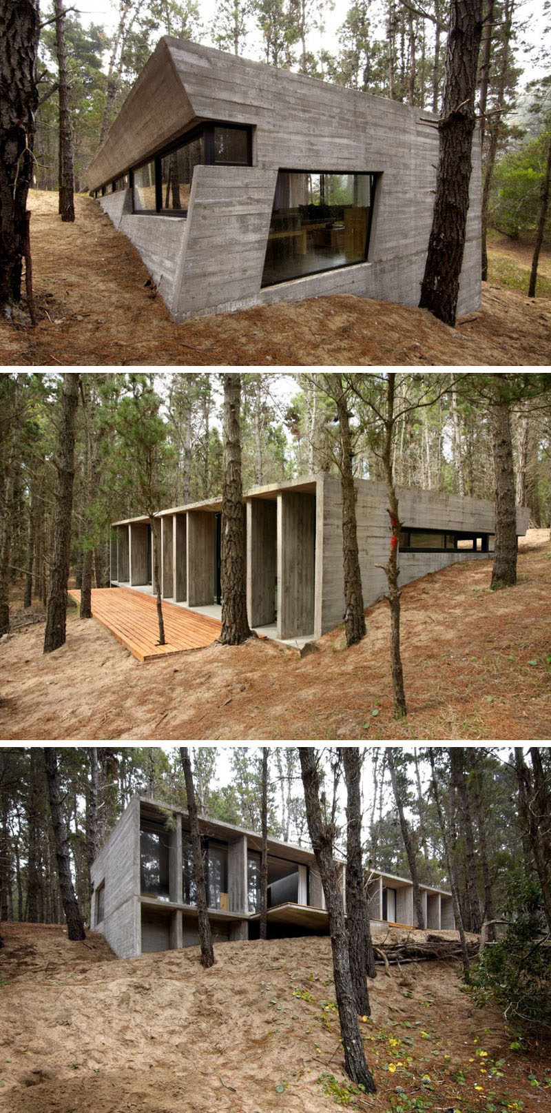 18 modern house in the forest this concrete house contrasts the natural elements of