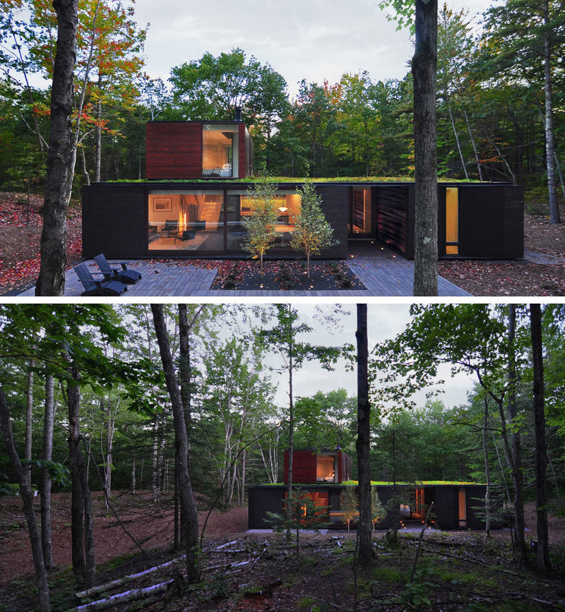 18 Modern House In The Forest // Large Trees Surround This Home With Green  Roof