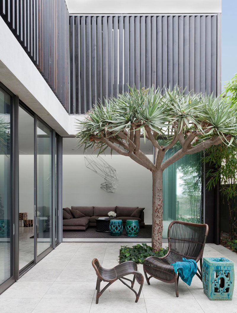 This private courtyard located just off a living room has a small space for a tree and plants.