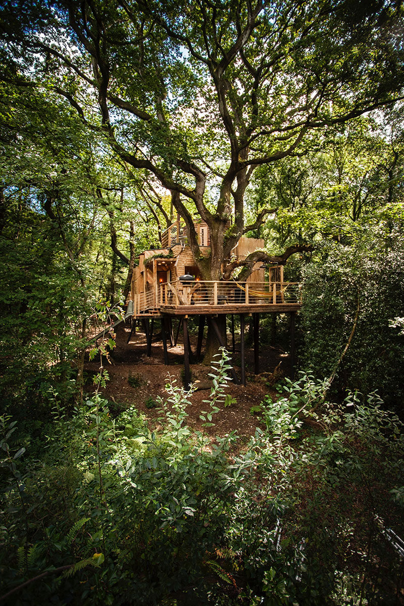 Located in West Dorset, England, this two-storey modern treehouse is arranged around a canopy of aged oak trees, and includes many a circular interior with modern luxuries.
