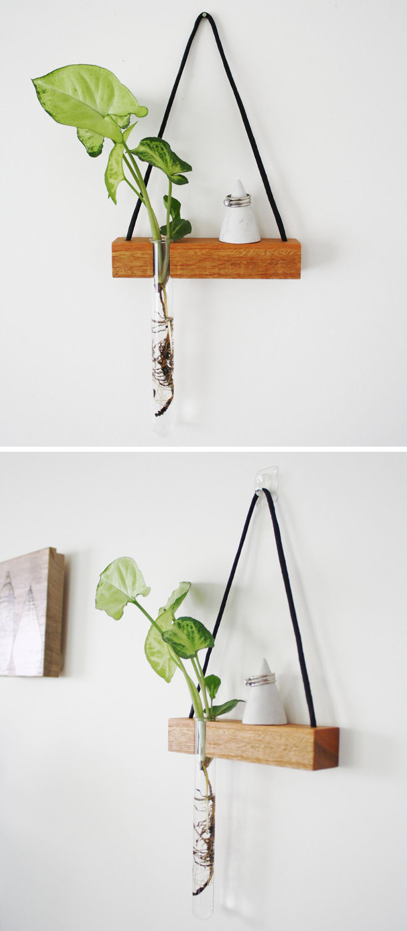 These Small Shelves Hang On Your Wall Just Like A Piece Of