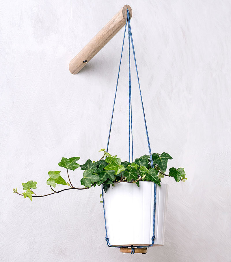6 Ways To Include Indoor Vines In Your Interior | Hanging planters create the perfect spot for plants with vines as they let the leaves cascade down the sides and fill your space with greenery.