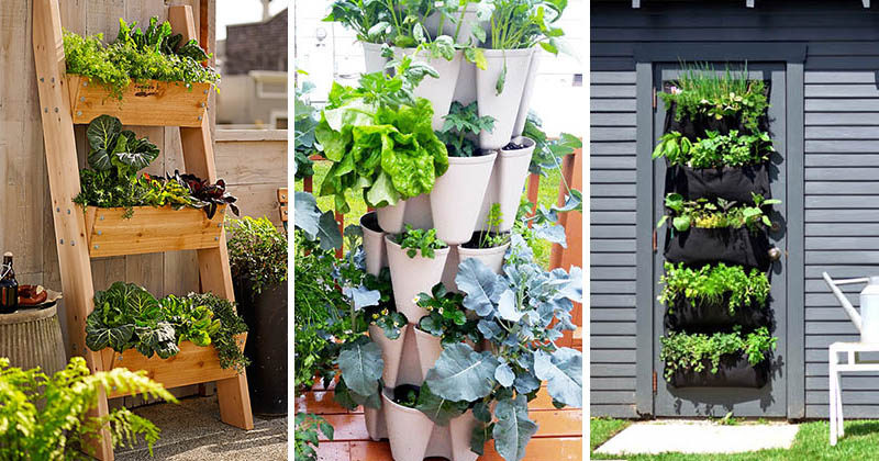 Vegetable Garden Ideas For Beginners 5 vertical vegetable garden ideas for beginners | contemporist