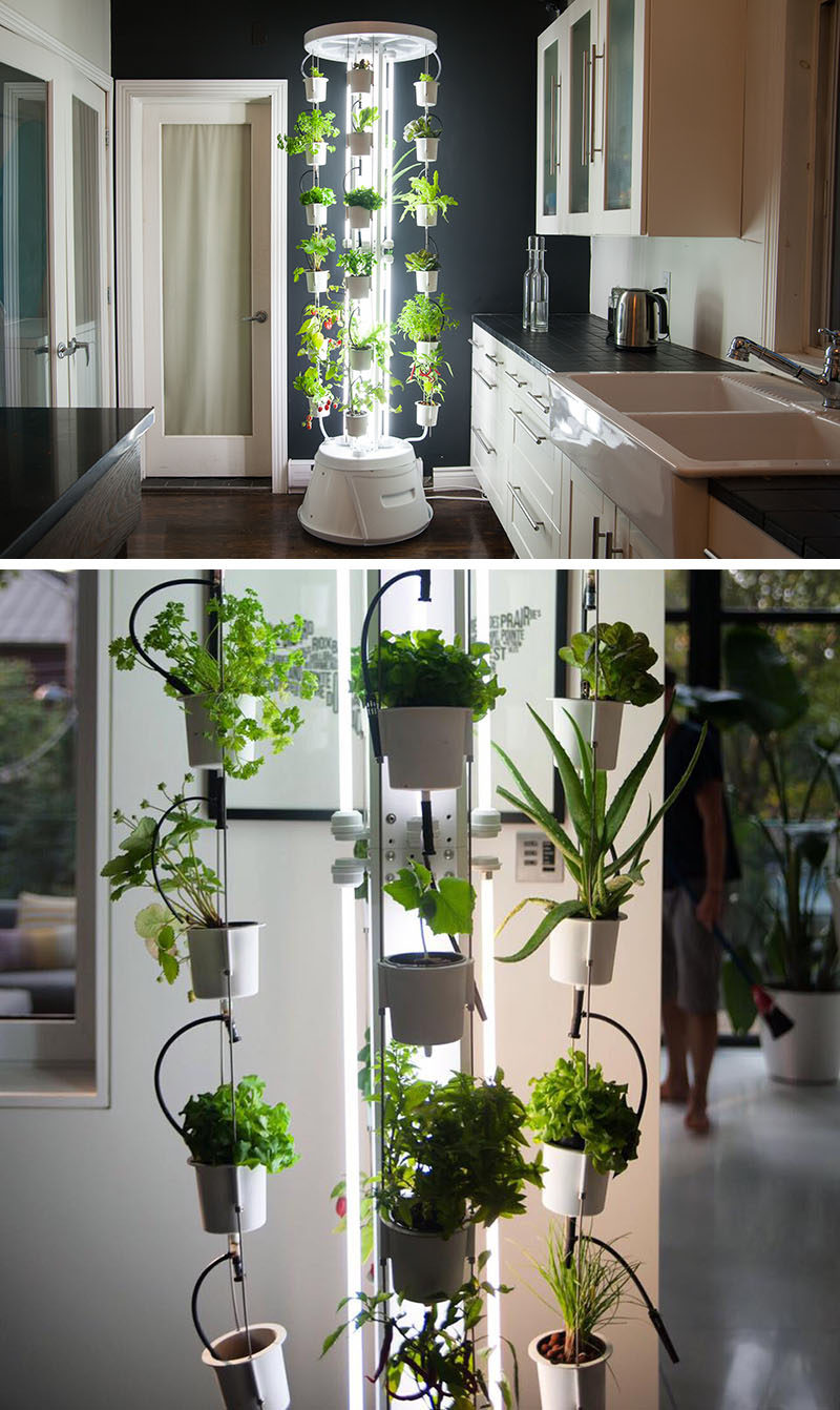 5 Vertical Vegetable Garden Ideas For Beginners / If you're short on space outside but still want to be able to grow some of your own veggies, an indoor vertical vegetable garden is what you need. This tower grows plants and vegetables without using soil and doesn't even require watering.