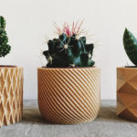 These Biodegradable Planters Are Made From 3D Printed Wood
