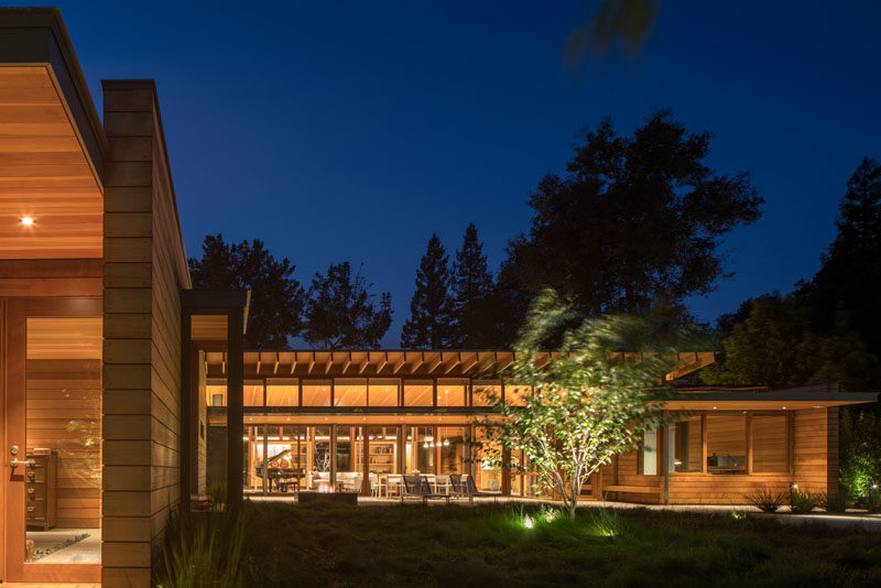 The landscaping of this modern house has specific trees highlighted with outdoor lights to create a focal point in the garden at night.