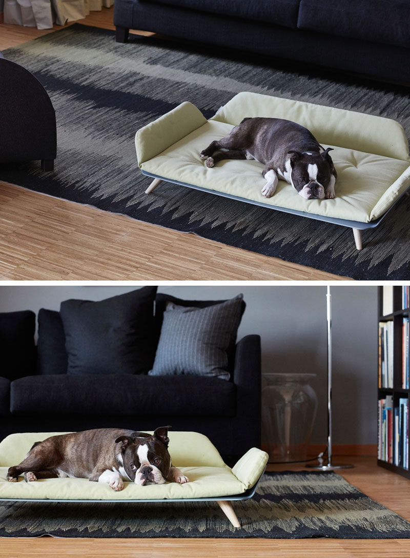 Designer Gerd Couckhuy has created the Letto dayBed, a stylish and modern dog bed made with an aluminum frame, light wood legs and a soft comfortable pillow.