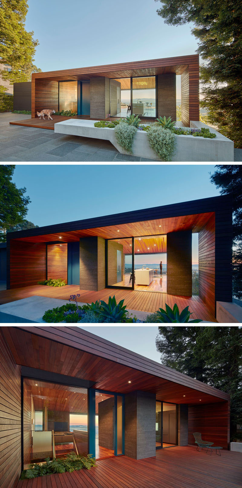 This modern house features a wood tube that connects the garden with the main entrance of the home and continues into the living areas. A large blue front door acts as the main entrance, however the kitchen has a large sliding glass door that opens to the small garden area and allows for outdoor dining, with a concrete planter and bench defining the dining area.