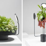 These Planters Are Designed To Have Their Own Light Source