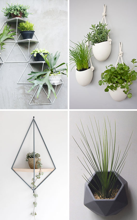 Diy 10 Modern Wall Mounted Plant Holders Designer Drains