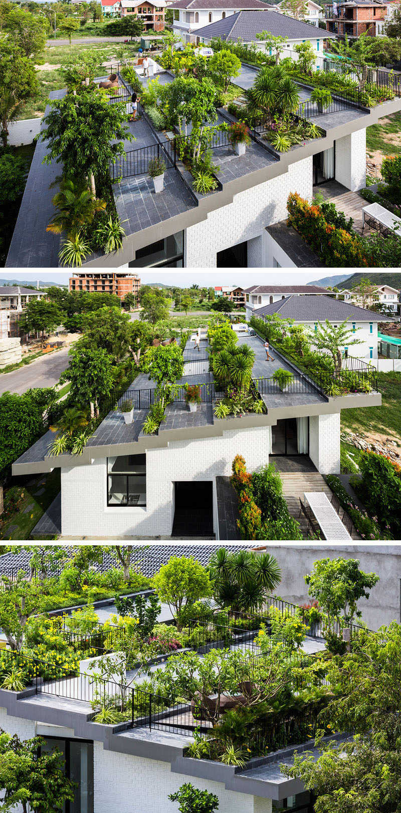 The roof of this family home has been turned into a rooftop garden with multiple levels to provide ample space to entertain and relax.