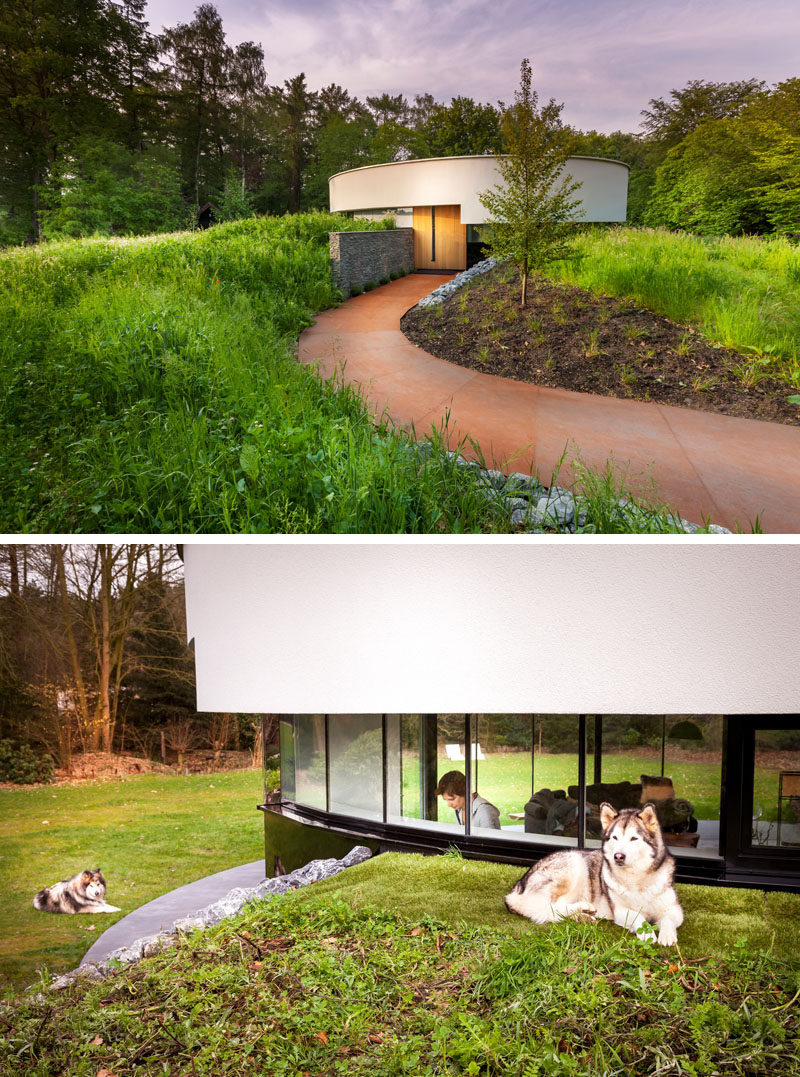 Located in an opening in a Dutch forest, this small, circular modern house was designed for a couple and their Alaskan malamute dogs. The circular house that measures in at 914 square feet (85 m²) features a metal walkway leading up to the large wooden door and is tucked right into the hillside to help reduce it's impact on the landscape and allowing it to blend in better with the surroundings.