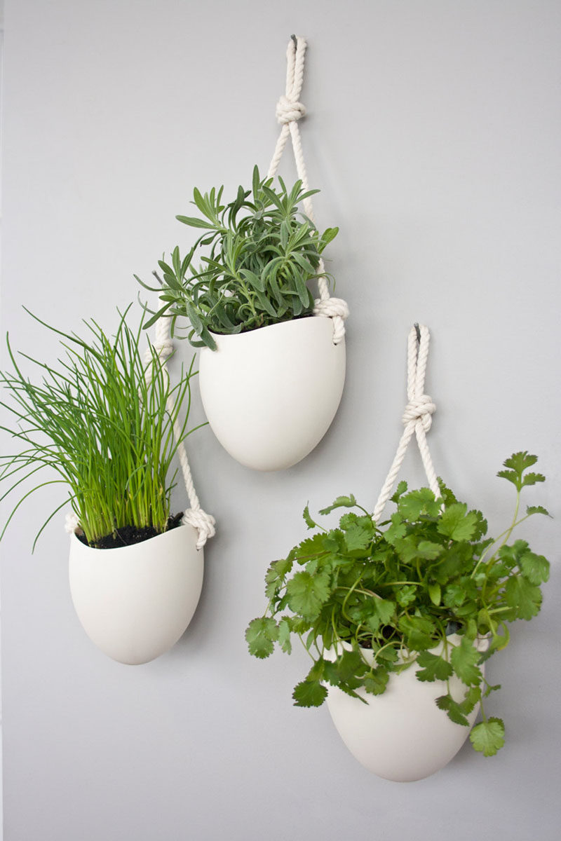 These White Porcelain Bowls Hang From Rope To Create Simple Contemporary Planters That Are Large Enough Plant A Variety Of Herbs Or Smaller Plants