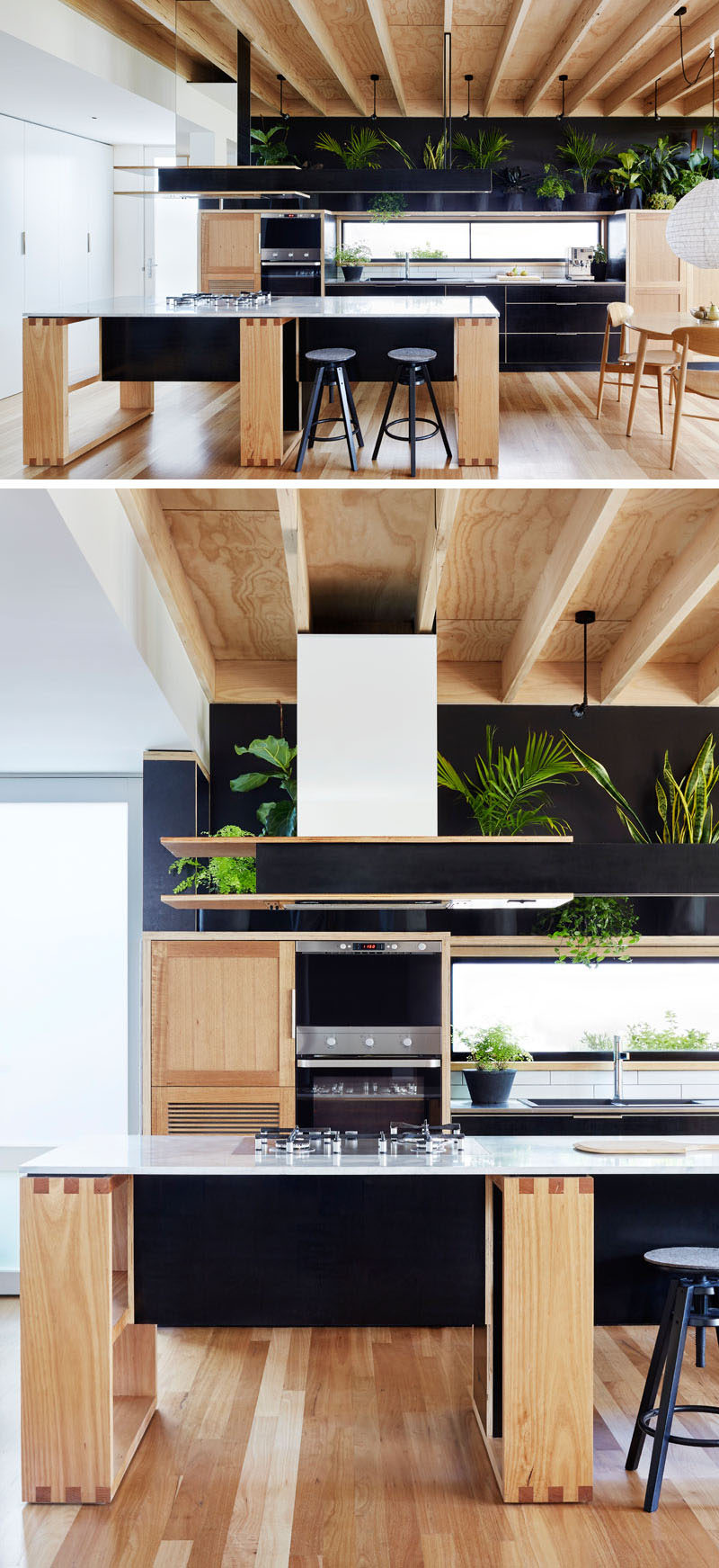 This modern kitchen combines wood and black formply (a type of plywood) drawer fronts. A row of plants sitting above the kitchen and against the wall, add a touch of nature to the space.
