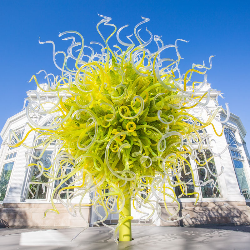 This spring, the New York Botanical Garden has a new exhibition called CHIHULY, that will showcase artist Dale Chihuly's innovative glass sculptures.