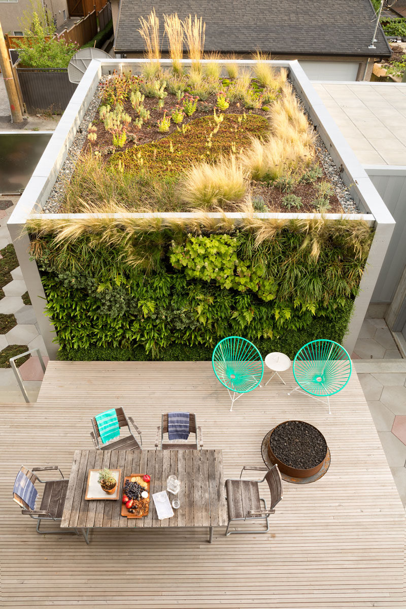 This backyard patio and entertaining area has a firepit and a green wall that acts as a backdrop, and wraps around onto the roof of a laneway house and garage.